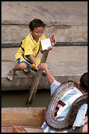 Boy selling postcard